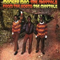 MONKEY MAN/FROM THE ROOTS:2 ON 1 EXPA